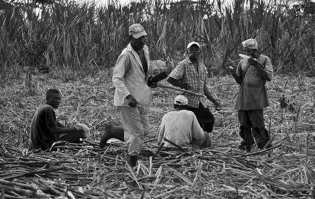 Haitian immigrant workers taking a rest in a Dominican Republic field. Photo credit: Juan Eduardo Donoso, Creative Commons license