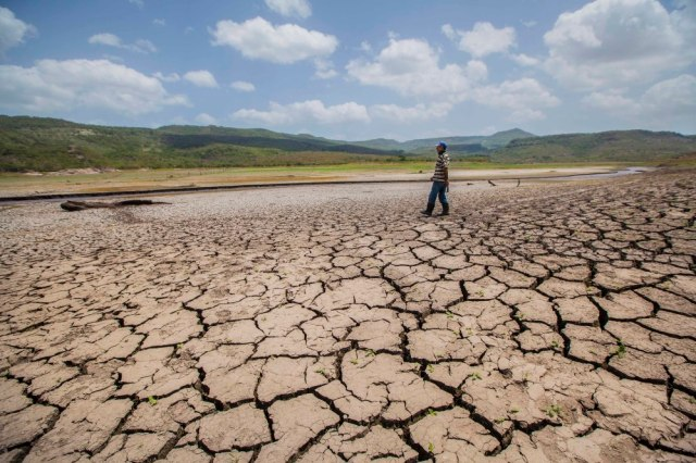 Drought in Central America. Photo by Diana Ulloa.