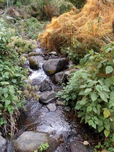 These lovely streams provide a source of running water for the community to use in their homes.