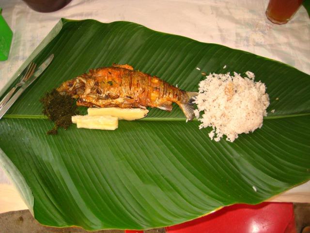 fish plato