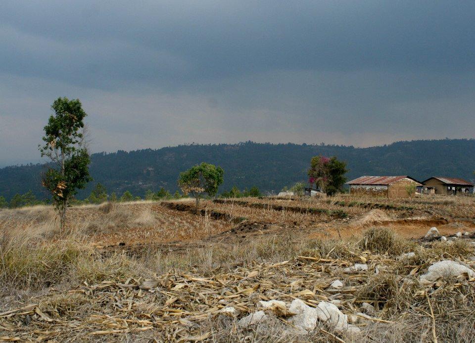 Small farm near the Marlin Mine in Guatemala. Anna Vogt