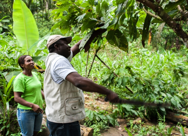Chocolate farmers in Choco, Colombia. Anna Vogt